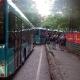 Shuttle-Busse, Ausstieg am Langener Waldsee, 5:40 Uhr