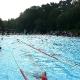 Schwimmen im Waldbad Senne